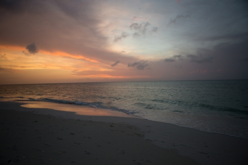 <h5>Parrot Cay, Turks and Caicos</h5>