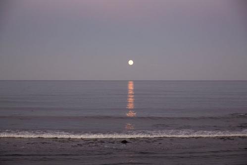 <h5>Blue Moon, Maine</h5>